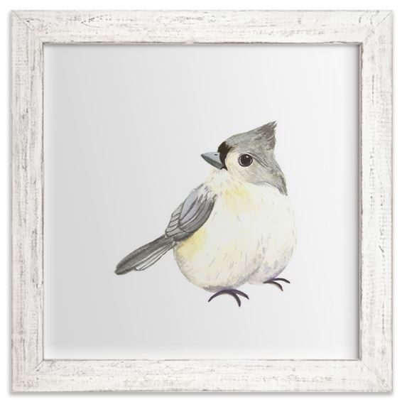 Crested Tit Image